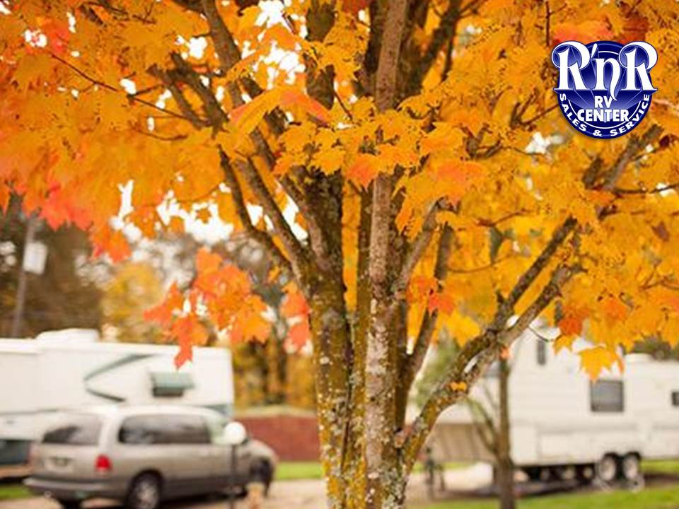 Cool Fall Camping Trips